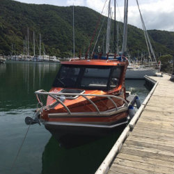 Profile Boats Testimonal by Andrea Jarvis 635H