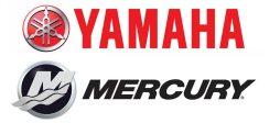 Procell Boats Pro Yamaha or Mercury